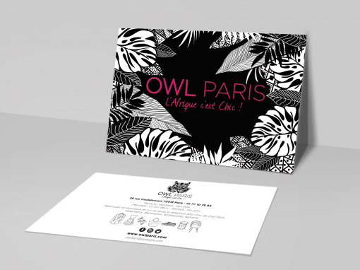 OWL PARIS FLYER