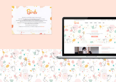 BIRDS BOX